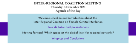 Inter-Regional Coalition meeting