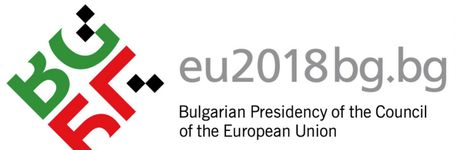 End FGM EU writes its recommendations to the Bulgarian Presidency of the Council of the EU