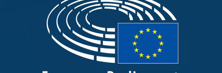 European Parliament resolution on Zero Tolerance for FGM